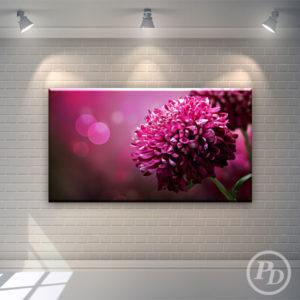 Tablouri canvas cu flori, productie publicitara pody flw purple 300x300